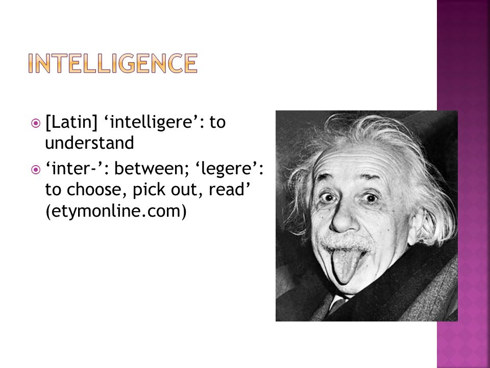 Intelligence [Latin] 'intelligere': to understand
